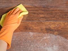 Shop - prodotti di pulizia e manutenzione 6
